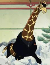 kaku girafe
