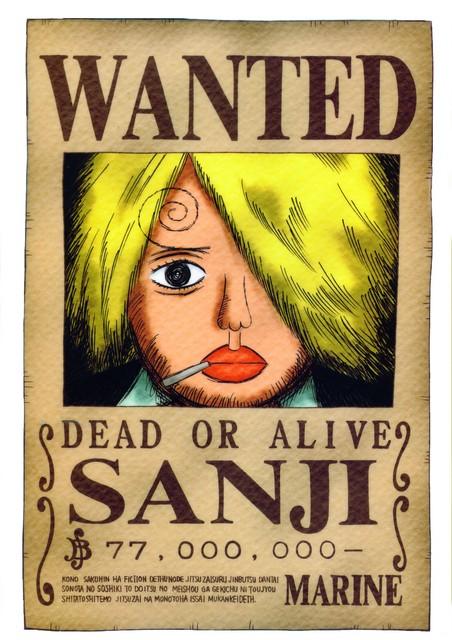 One Piece Wanted Sanji
